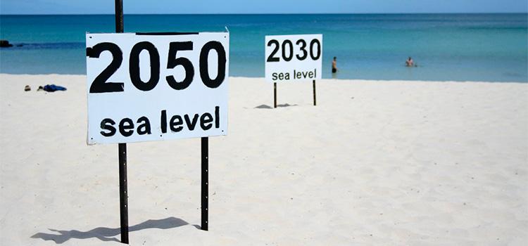 El canvi climàtic a les ciutats