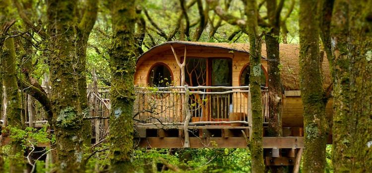 Una casa en un arbre. Us ensenyem les més espectaculars.