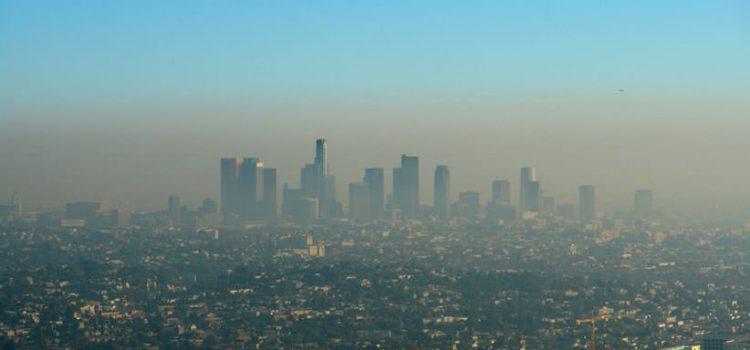 Edificis que purifiquen l'aire de les ciutats